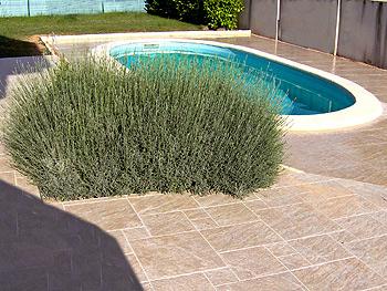 Carrelage dallage fa ence arstisan carreleur entreprise dans l 39 ain rhon - Carrelage tour de piscine ...